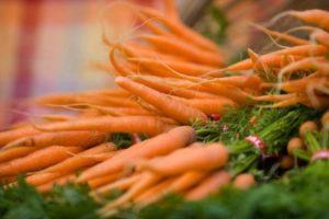 Как правильно хранить морковь в домашних условиях