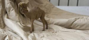 Как нужно стирать одеяло из верблюжьей шерсти в стиральной машине